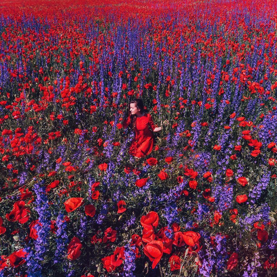 15 Pictures Of Girls In Dresses That Beautifully Match Their Backgrounds - Poppies And Delphinium Field, Crimea