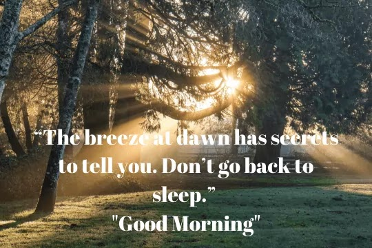 Good Morning Images In Quotes | Good Morning Quotes For Him/Her