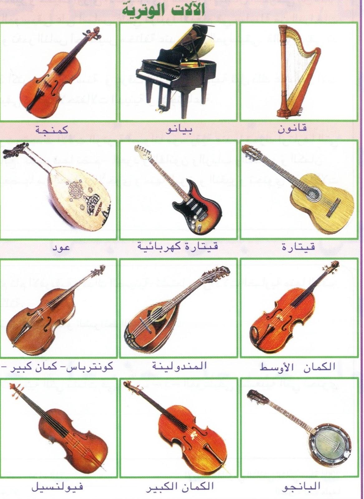 التشويق تموجات كلية اسماء الالات الموسيقية بالصور بالعربي Sjvbca Org