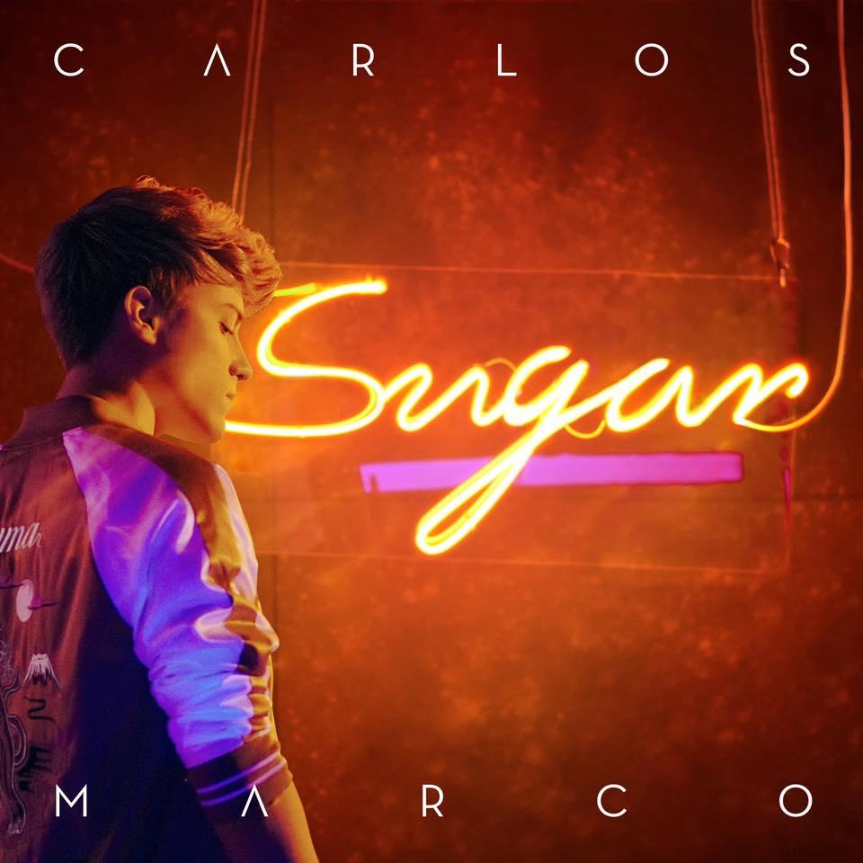 Música en todo su esplendor: Gira de conciertos de Carlos Marco.