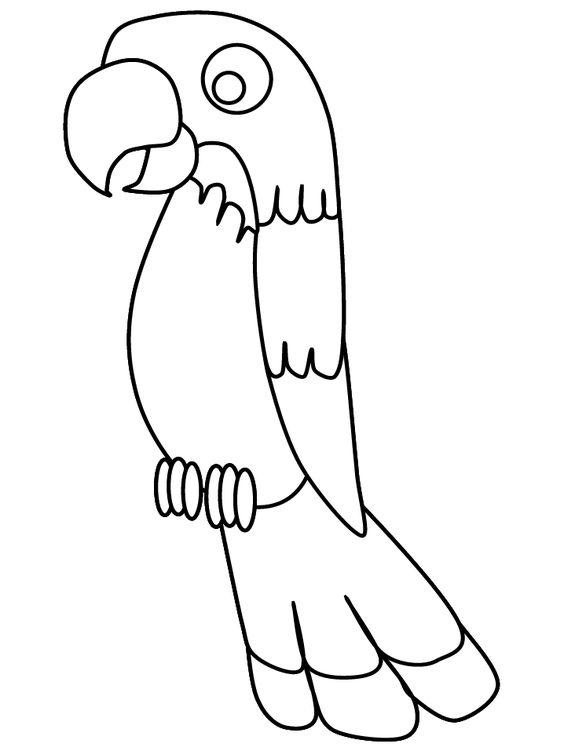 Tranh tô màu con Vẹt đơn giản