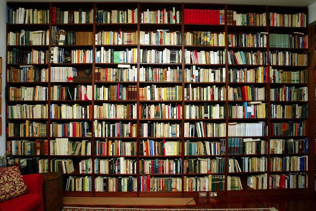 Reedición. Libros, lectura, memoria, y un poco de televisión