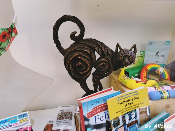 Povestea-pisicilor-din-york