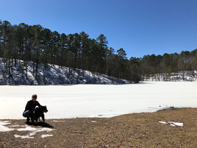 woman and dog near frozen, snow-covered lake
