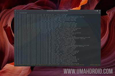 Install Wine di Elementary OS Ubuntu Linux Mint
