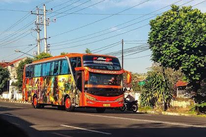 Informasi Bus Jurusan Lombok Yang Penting Untuk Diketahui