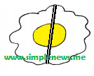 membagi dua bagian sama besar www.simplenews.me