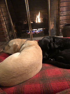 Ginger Kutsch's dogs from the Seeing Eye, Easton, a yellow Lab, and Willow, a black Lab, curled up together on a plaid dog bed in front of a fire in a fireplace