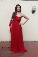 Actress Sana Khan Latest Pos in Georgius Spicy Red Long Dress at the Interview  0016.jpg
