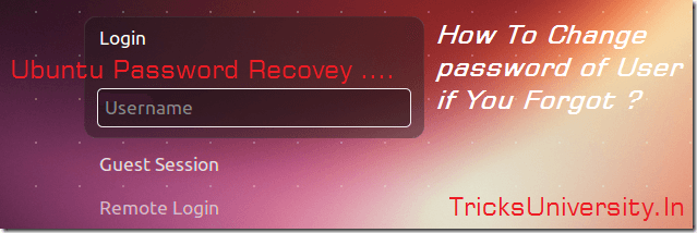How To Change password of User if You Forgot tricksuniversity