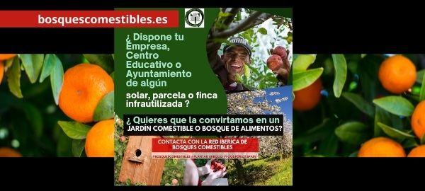 Diseño de bosques de alimentos