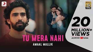 तू मेरा नहीं Tu Mera Nahi Hindi Lyrics - Amaal Mallik