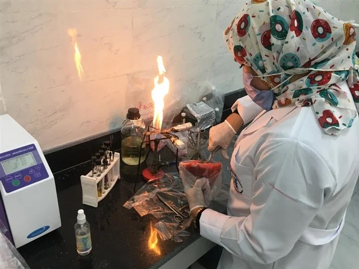The most recent equipment ... Raising the efficiency of food laboratories in Alexandria port