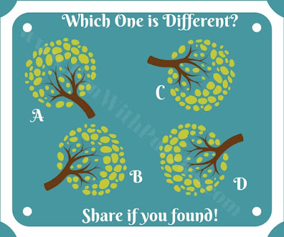 Genius puzzle to find odd one out!