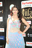 Amyra Dastur in Flower Print Choli Transparent Chunni at IIFA Utsavam Awards 42.JPG