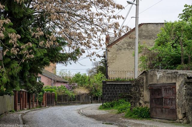 вулиця Ольбрахта в Ужгороді
