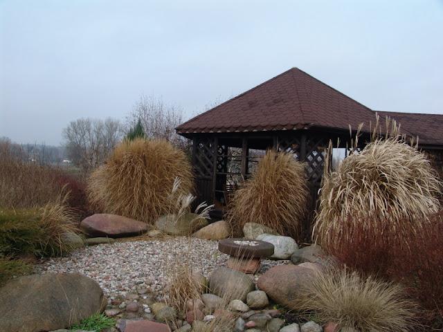 trawy jesienią