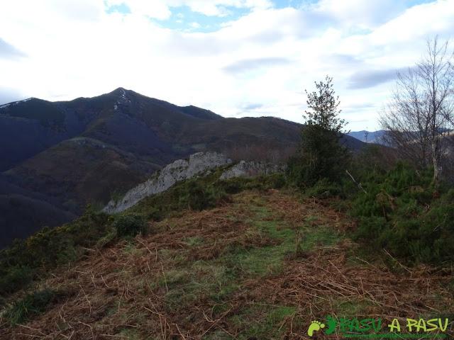 Ruta a Peña Melera y Los Pandos: Bajando hacia las Foces del Pino por el Bosque Pandos