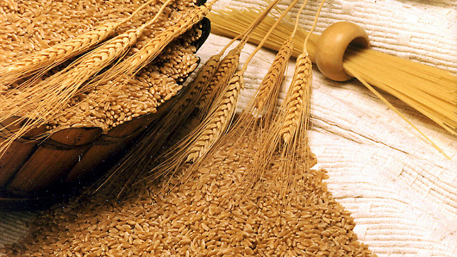 La molienda de trigo creció un 8% entre enero y mayo