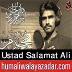 https://aliwalayazadar.blogspot.com/2020/08/ustad-salamat-ali-nohay-2021.html