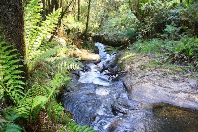 lower cascades of waterfall