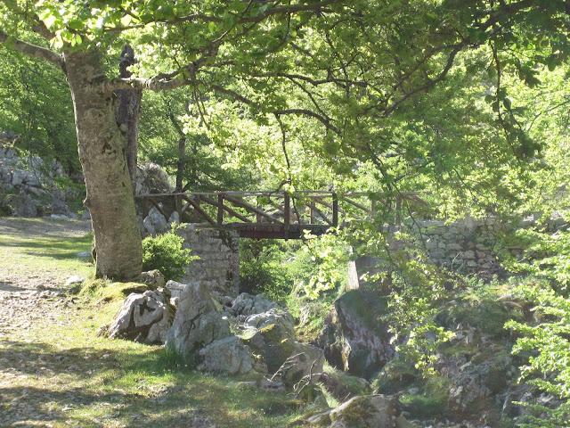 Rutas Montaña Asturias: Pozo del Alemán, en ruta al Requexón