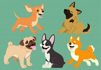 Perros domésticos: amigos por siempre