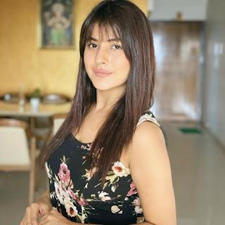 Indian actress, Shehnaaz Gill