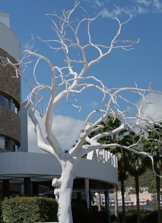 Blog + Fotografie by it's me! - Reisen - La Isla Blanca Ibiza, Santa Eularia - gekälkter Baum vor einem Hotel