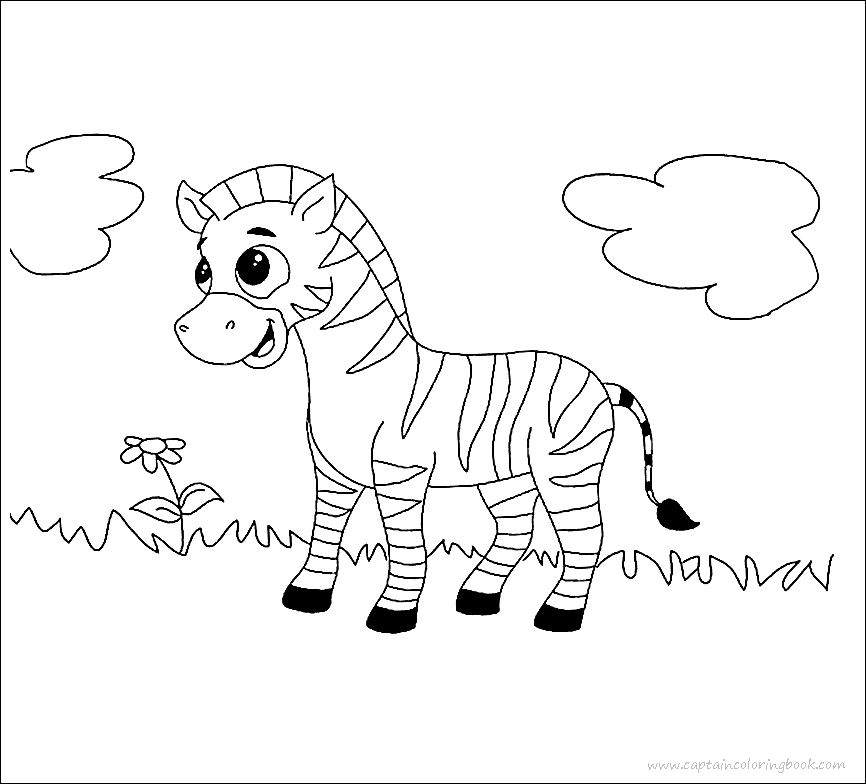 Free Printable Zebra Coloring Pages For Kids   Zebra coloring ...   784x866