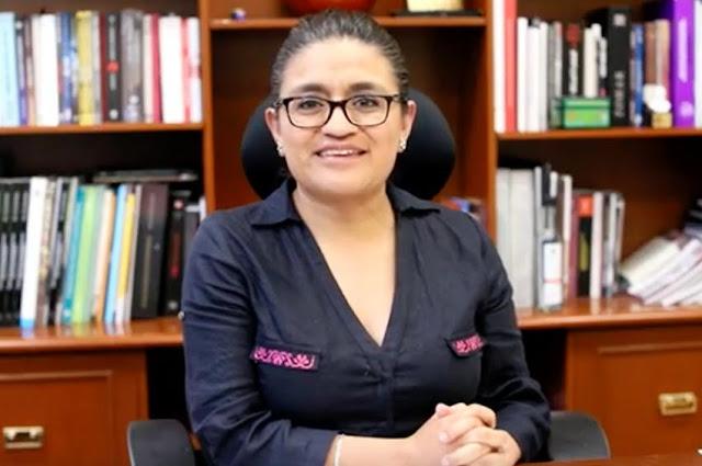 Listo, proyecto de dictamen de nueva Ley General de Catastros y Registros Públicos: Aleida Alavez