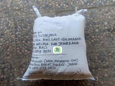 Benih padiTRISAKTI NEW   Pesanan I PUTU SUTARJANA Jembrana, Bali.  (Setelah packing)