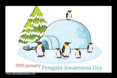 World Penguin Awareness Day