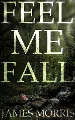 Feel Me Fall - review