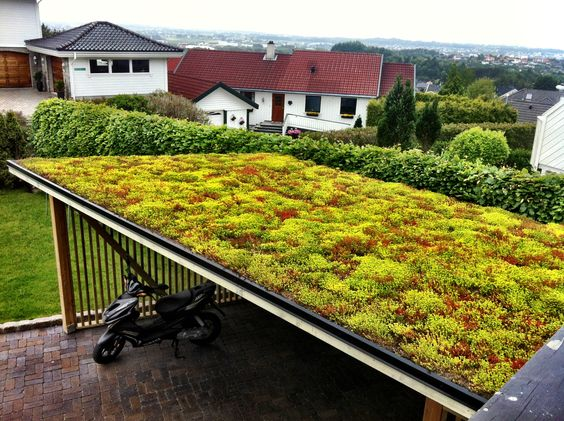 green roof romania. Black Bedroom Furniture Sets. Home Design Ideas