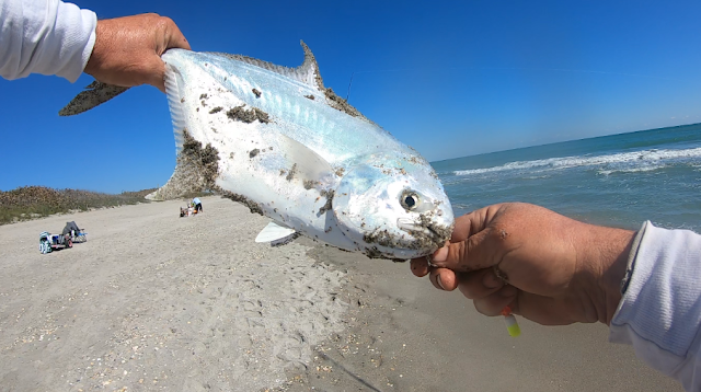Florida, East Coast, Surf Fishing, Florida Surf Fishing, Florida Fishing, Fishing, Fishing Reports, Fish Reports, Anglers,