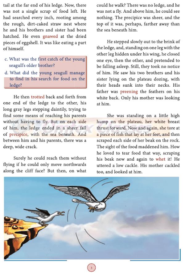 Chapter 1: His First Flight, Samacheer Kalvi, solutions for English, Class 10th SSLC, Tamil Nadu State Board,