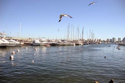 Punta del Este - Uruguai - escala de cruzeiro