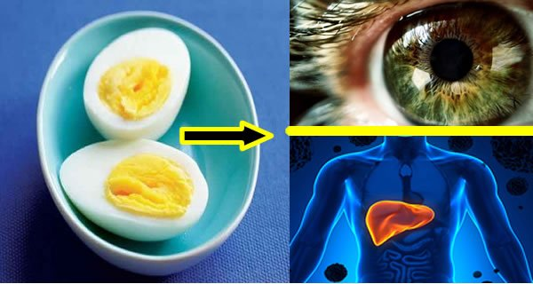 Start Eating Two Eggs A Day And Watch How Your Health Changes