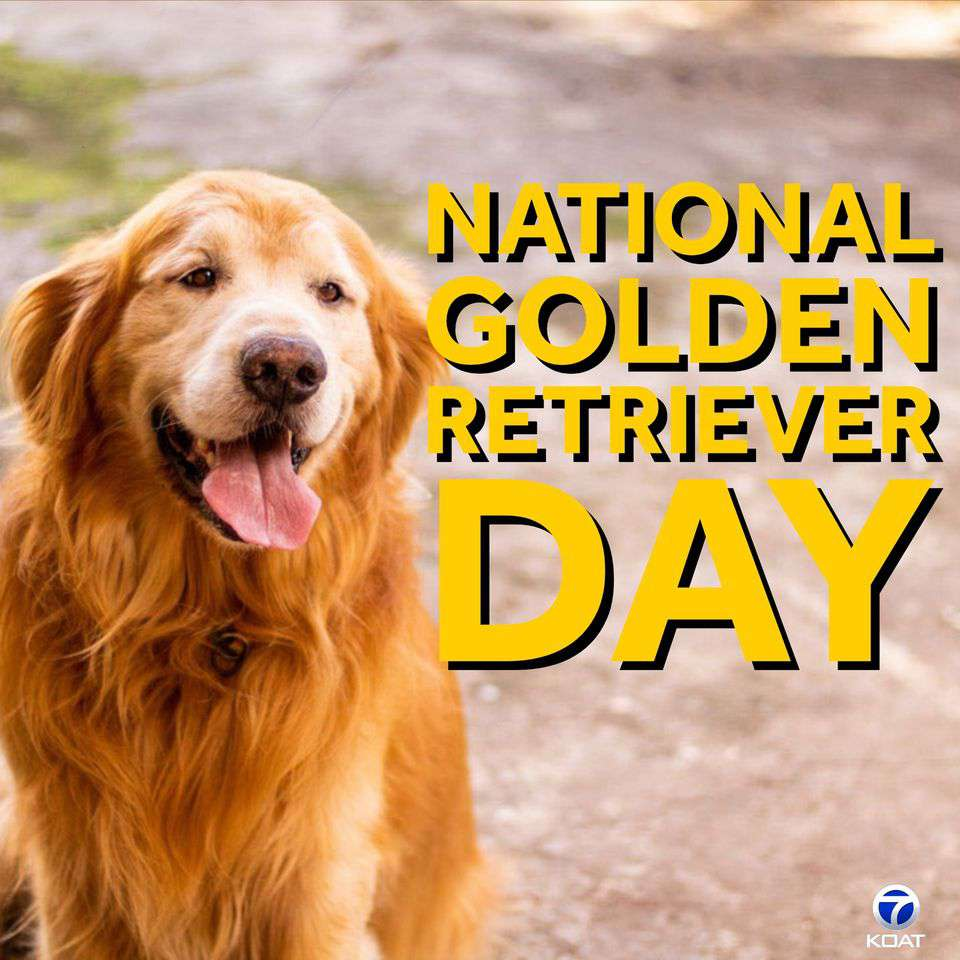 National Golden Retriever Day Wishes