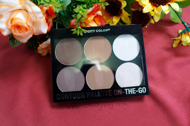 review-city-color-countour-palette-on-the-go-bagus