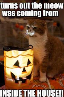 funniest-halloween-memes