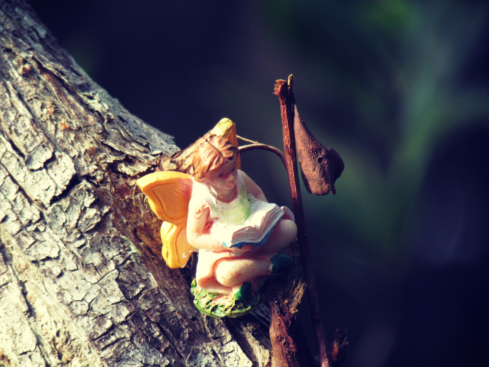 A fairy winged creature in the woods reading a book of fairy tales and Alice in Wonderland adventures + nature books