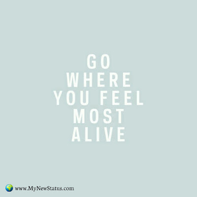 Go where you feel most alive #InspirationalQuotes #MotivationalQuotes #PositiveQuotes #Quotes #thoughts