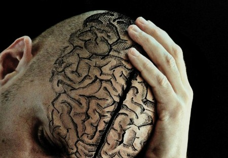 antidepresivo cerebro