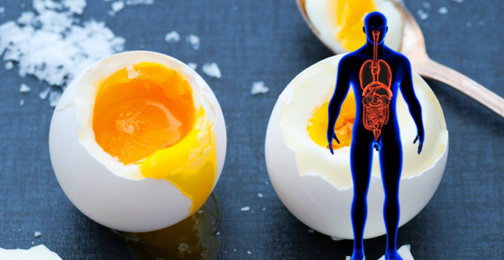 Consume 2 Eggs A Day To Strengthen Your Bones, Lose Weight, Improve Your Brain And Much More