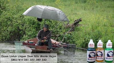Essen Ikan Nila Khusus Untuk Musim Hujan