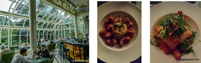 Pratos servidos no bar L'Orangerie do Hotel St Helen's Radisson Blu