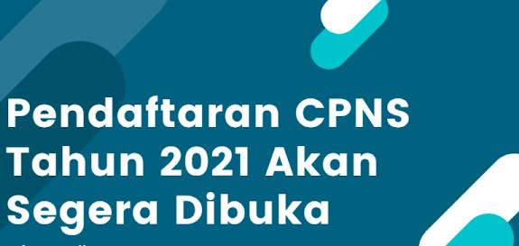 Formasi CPNS dan P3K Kabupaten Labuhanbatu Utara - Sumut