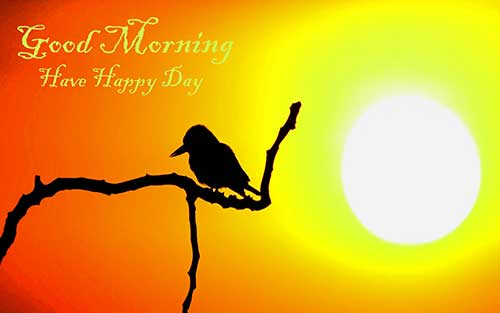 70+ Good Morning SMS, Wishes, Quotes And Gif Images HD Download70+ Good Morning SMS, Wishes, Quotes And Gif Images HD Download